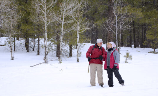 Seniors should stay active during the winter when possible.