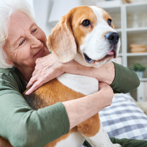 Dogs can help improve health in seniors and prevent loneliness